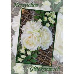 Glückwunsch Rosen