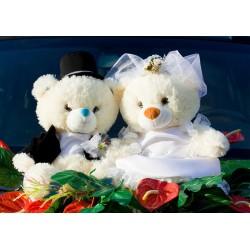 Teddy Brautpaar