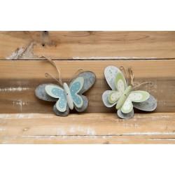 Schmetterling blau und grün