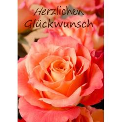 Glückwunsch orange-rote Rose