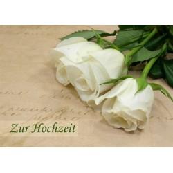 Zur Hochzeit weisse Rosen